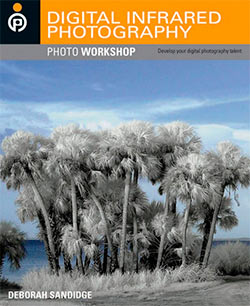 Digital Infrared Photography Photo Workshop - Deborah Sandidge